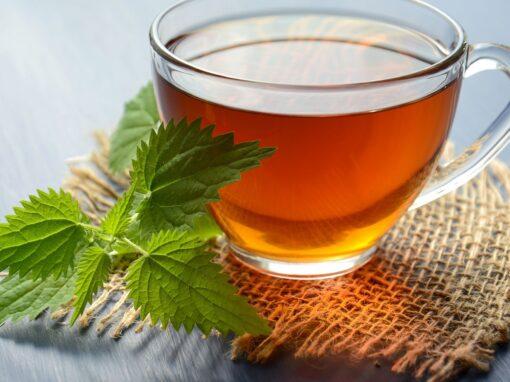 Beneficios del té: descubre todas las ventajas que tiene para el organismo